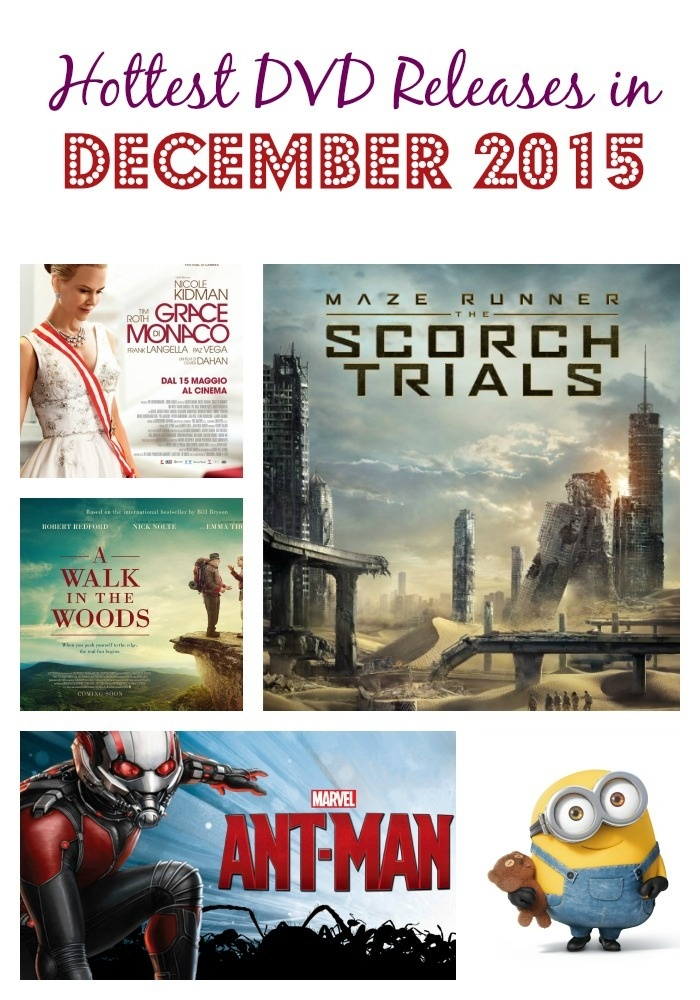 Looking for great new flicks to add to your holiday wish list or watch on a cold night? Check out the new December 2015 DVD Releases!
