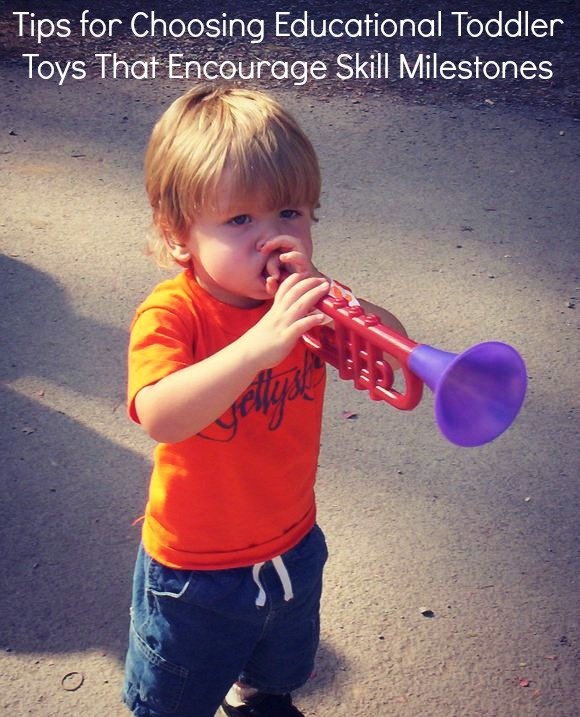 Tips for Choosing Educational Toddler Toys That Encourage Skill Milestones